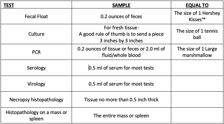 test sample size guidelines