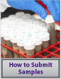 how to submit samples